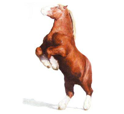palomino paint quarter horse