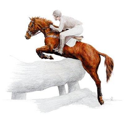 """Résultat de recherche d'images pour """"dessin cross cheval"""""""